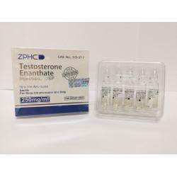 Testosterone E